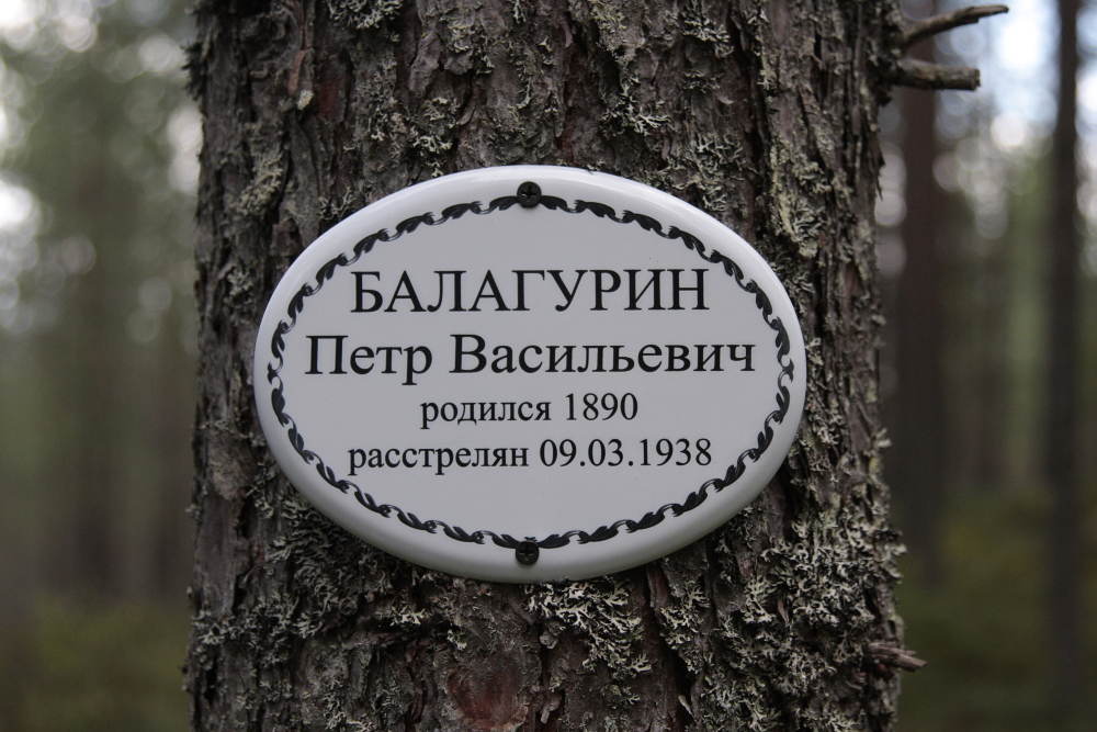 Памятная табличка Петру Васильевичу Балагурину. Фото 2016 г.