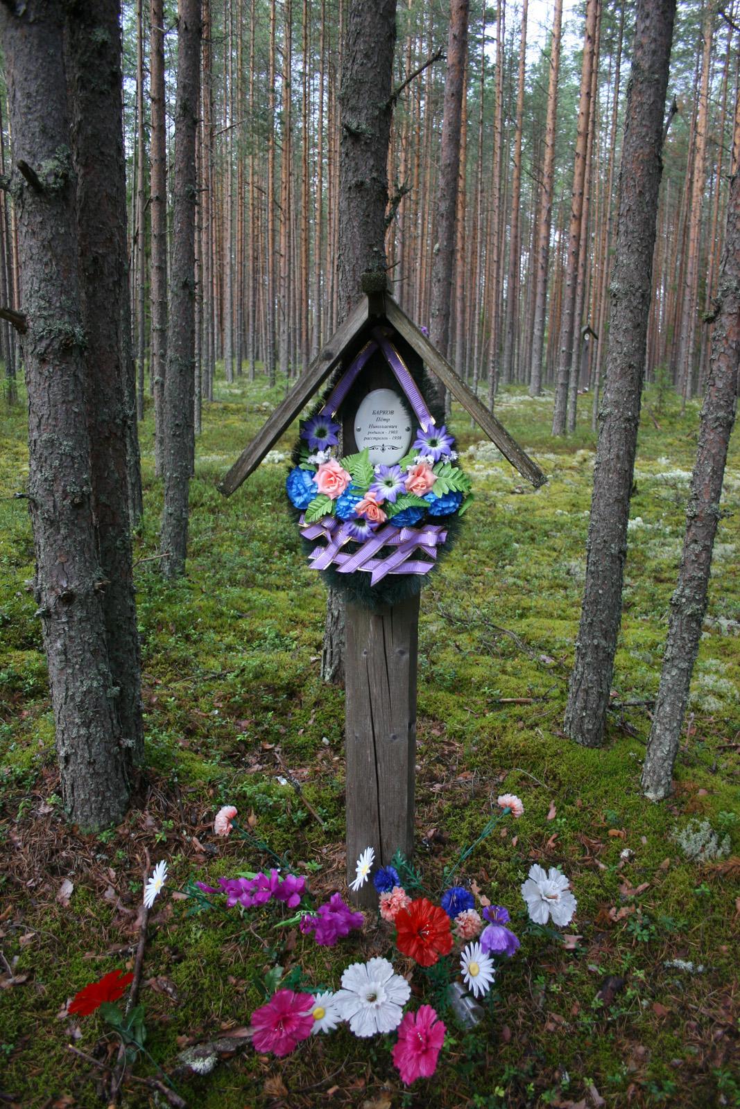 Памятная табличка Петру Николаевичу Баркову